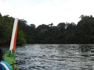 Di Pulau Sempu, kami diturunkan di Teluk Semut.