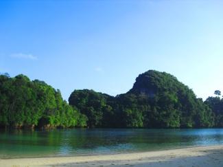 Tebing karang di Pulau Sempu