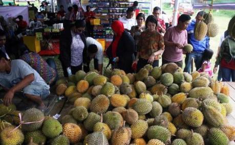 festival_durian_di_mijen_semarang_6_maret_sofri7